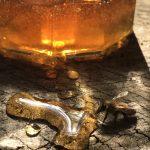 Bee sipping on spilt honey